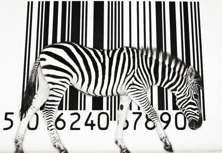 BIZARRE BARCODE - stripes, africa, animals, antelope, zebras, commerce, abstract, black and white