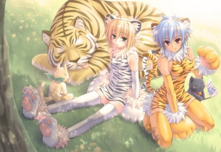 Original - original, animal ears, tail, tiger, cat, kawai, animal, cute, anime, girls
