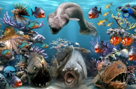 Sea Creatures - aqarium, sea creatures, fish, ocean