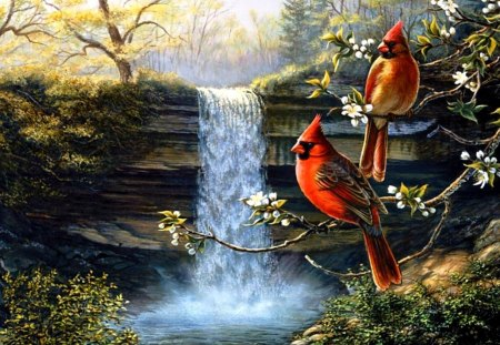Heritage Cardinals - waterfall, birds, trees, nature, painting