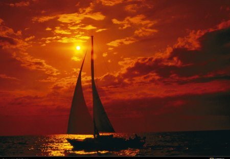 orange sailboats - sailling at sunset, sails at sunset