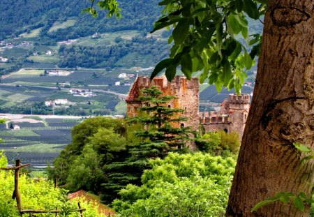 View from the castle - lovely, view, high, greenery, town, trees, nice, city, green, summer, path, nature, branches, castle