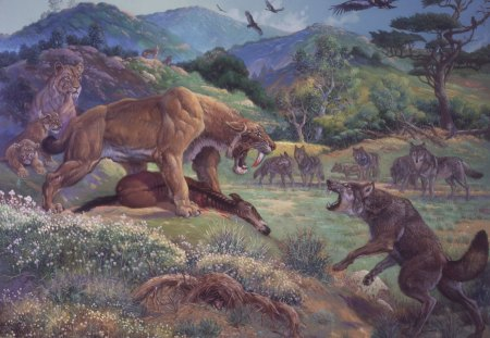 Saber-tooth Tiger  VS.  Dire Wolf - cat, mammals, lions, canine, dog, wolf, saber tooth tiger, animals, feline, dire wolf, prehistoric