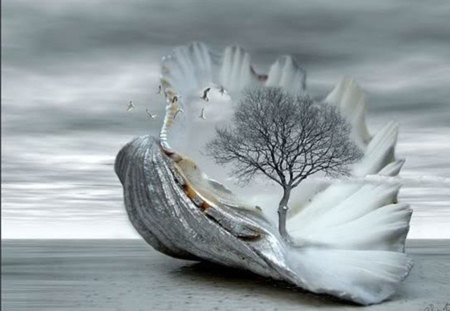 cool morning day - surreal, fantasy, tree, shell
