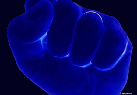 Black And Blue Fist - fist, blue, black and blue, punch, black