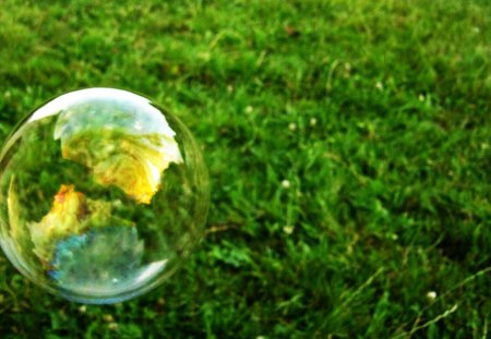 Bubble - reflection, bubble, grass, love
