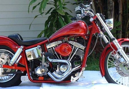 Hot Rod Harley >> Harley Davidson Hot Rod Harley Davidson Motorcycles