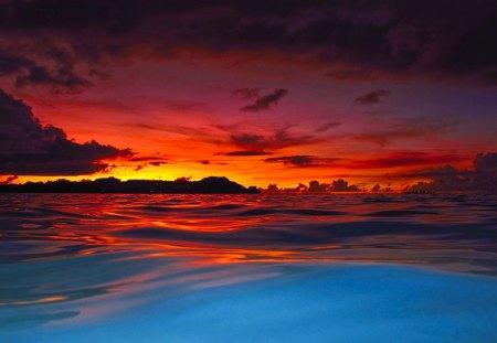Vivid Color - beautiful, colorful, vivid, bold, pretty, bright