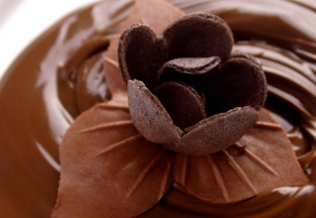 Chocolate Pudding.....Love It - it, chocolate, pudding, love
