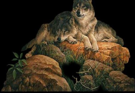 Wolves_on_the_Rocks - grass, wolf, rock, leaves