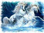 unicorns in the water!!