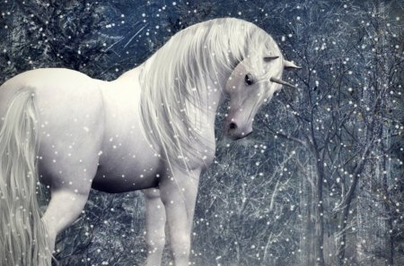 Unicorn in a Snowy Forest - mystical, woods, trees, unicorns, horses, snow, horn, nature, animals