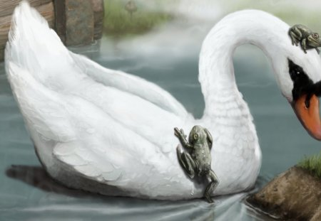 Swan and Frogs - pond, frogs, birds, wildlife, nature, swan, animals