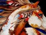 Native Horse
