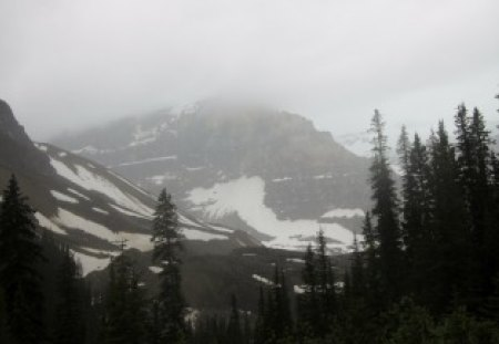 Snow on the mountains at Banff Alberta - snow, photography, mountains, green, trees