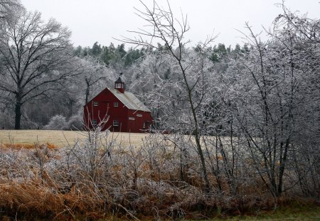 Barn in Frosty Countryside - frost, barns, winter, country, field, trees, woods