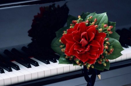 SONG OF JOY - songs, romance, happiness, music, musical instruments, lyrics, loneliness, sonnets, pianos, flowers, reflections, reds