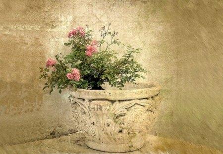 Vintage Blossom - vintage, vase, blossom, flower