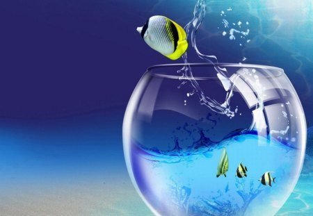 FISH OUT OF WATER. - pretty, fish, cute, bowl