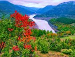 Arda river-Bulgaria