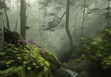 Into_ the_ Forest - stream, three, vegetation, forest