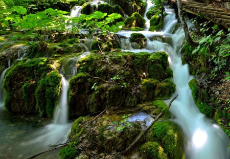 RIVER CASCADE - vegetation, forest, river, cascade