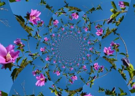 Heavenly Hibiscus - fractals, heaven, hibiscus, blue, HD, sky, 3D