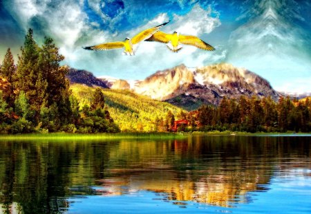 Dream world - lovely, flying, blue, world, beautiful, lakeshore, trees, lake, shore, nature, sunny, water, dream, birds, nice, clouds, river, mountain, sky, reflection