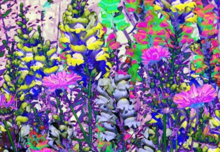 SOLARIZED SNAPDRAGONS - flowers, pretty, snapdragons, abstract
