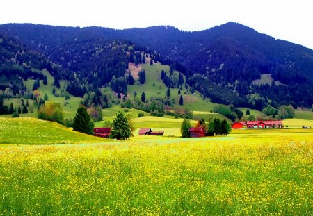 Village in the foot of the mountain - slopes, sunny, yellow, beautiful, mountain, nice, village, flowers, foot, lovely, fresh, houses, sky, peaceful, summer, nature, meadow, field