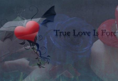 True Love Is Forever - true, fantasy, forever, love