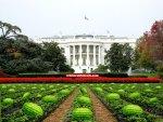 The White House Rose Garden