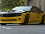 Black & Yellow Conv