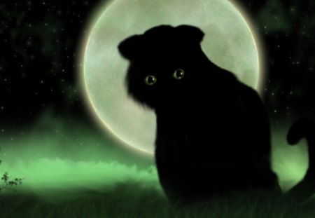 Fantasy Cat - night, black, moon, kitty, adorable, kitten, green, beautiful, cute, cat, art, moonlight, fantasy, clouds, stars, star, black cat