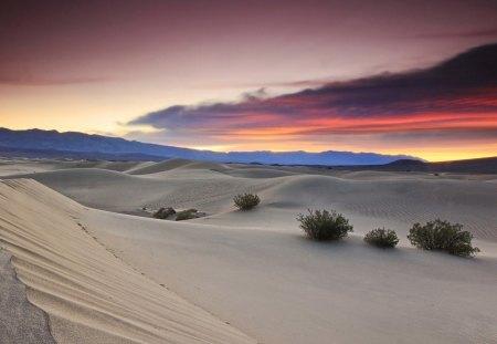 beautiful desert sunset - Deserts & Nature Background