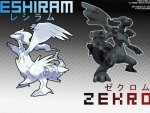 Zecrom and Reshiram Pokemon Black an White