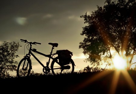 BICYCLE  at SUNSET - rest, bicycle, evening, sunset, trees