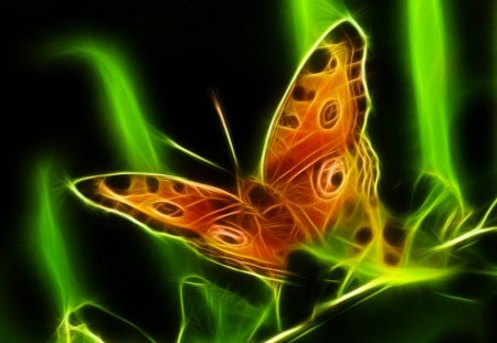Majestic Glow - butterfly, green, orange, glow