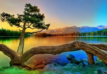 colorful landscape - mountains, water, trees, rocks