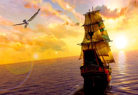 SUNSET SAILING - a bird, sunset, flying, ship, sea