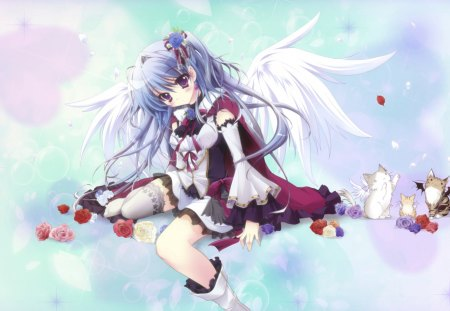 Angel Wings - rose, boots, blush, thighhighs, cherry blossom, sweet, flower hair, angel wings, heaven, hot, anime girl, star, bubble, female, wings, ribbon, play cats, cure, smile, sexy, twin tails, cool, blue hair, petals, cats