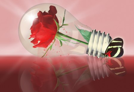 ♥ Light Bulb with Rose and Butterfly♥ - love, rose, 3d and cg, abstract, red, red rose, friendship, butterfly, light bulb