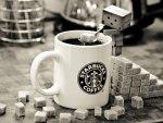 Domo Coffee
