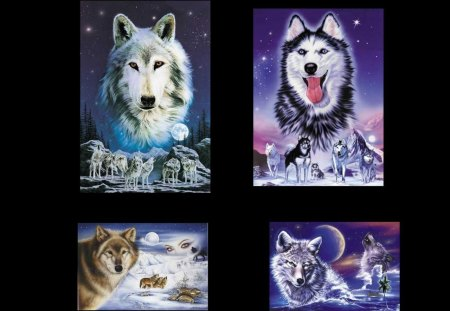 FOUR WOLVES WANTING A HOME - wolves, abstract, collage, four