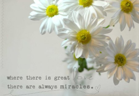 ~Love and Miracles~ - shine, words, pure, yellow, miracles, daisies, bouquet, quote, love, bright, forever, always, flowers, nature, great, white