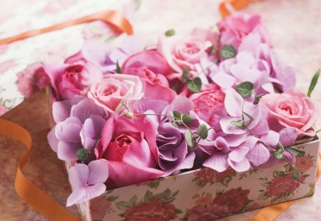 Snowdrop89 - flowers, special, pink, day, for u, sweet, lovely, purple, gift, box