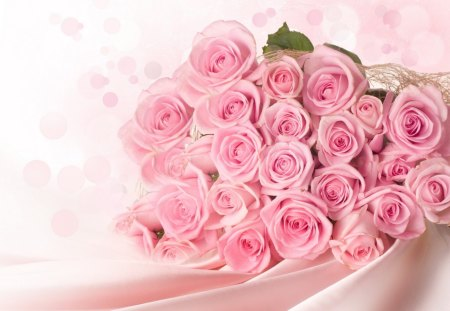 Pink Pastel Roses For Beautiful_Life