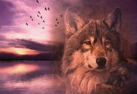Over Looking The Lake - animal, fantasy, wolf, lake, abstract, nature