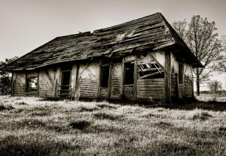 Scary House - art, house, black, dark, scary, fantasy, white, black and white, landscape, nature