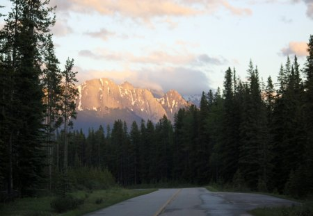 The sublime of the mountains at Banff Alberta - road, photography, green, mountains, trees, forests